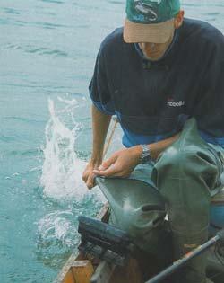 Рыбалка на сома