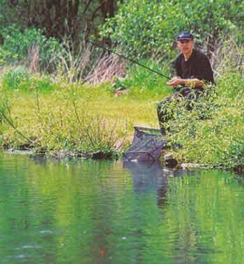 Поплавки для рыбалки