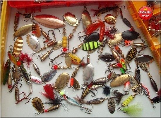 Ловля лосося на спиннинг