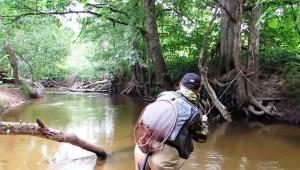 Снасти для ловли форели
