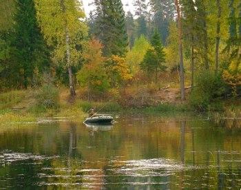 Ловля карпа осенью