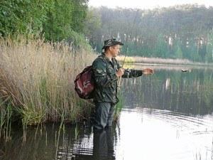 Ловля окуня на живца осенью