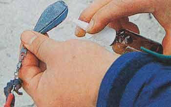 Нанесение аттрактанта пульверизатором